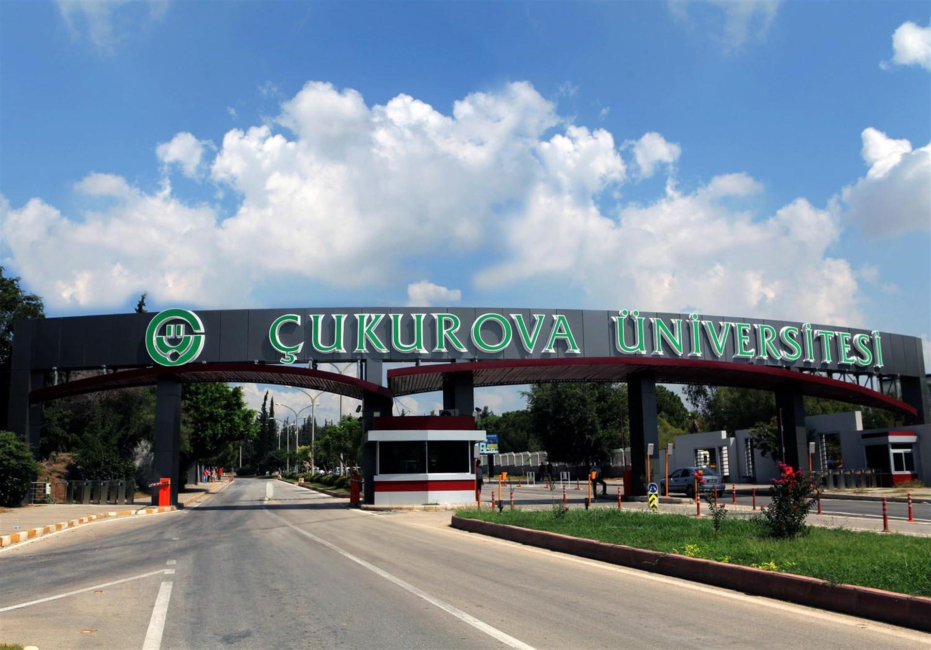 Çukurova Üniversitesi Rektörlüğü'nden Akademik Personel İlanı